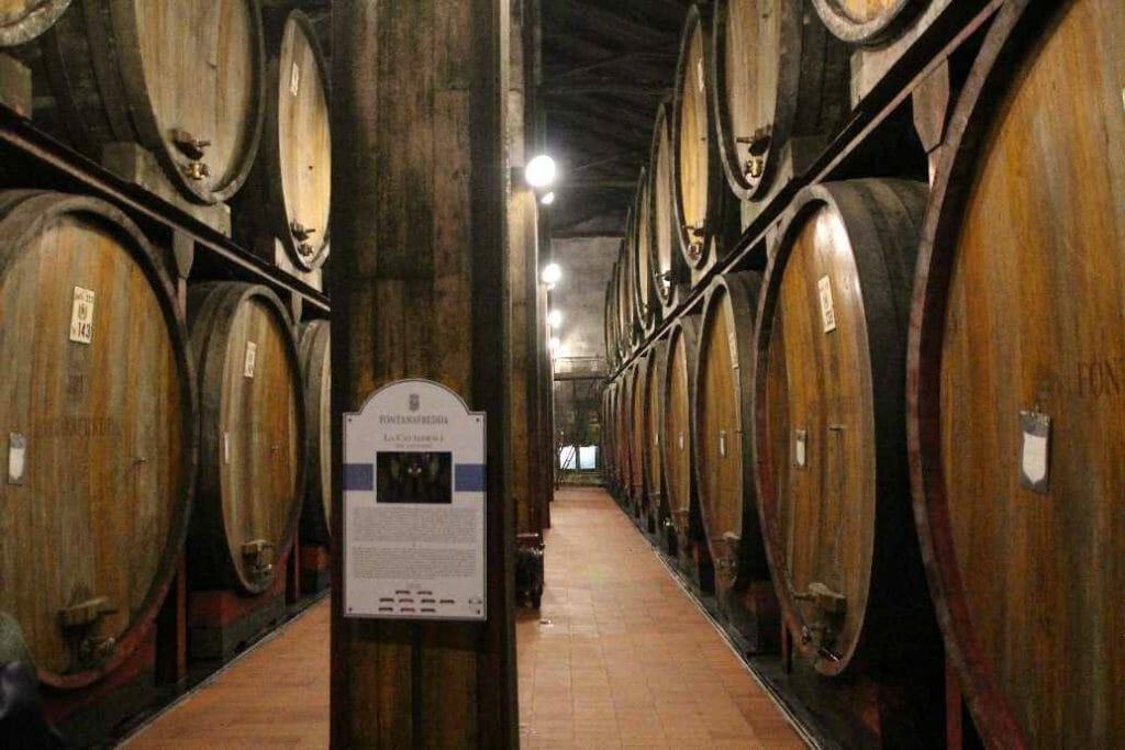 In the wine cellar at Fonatanafredda