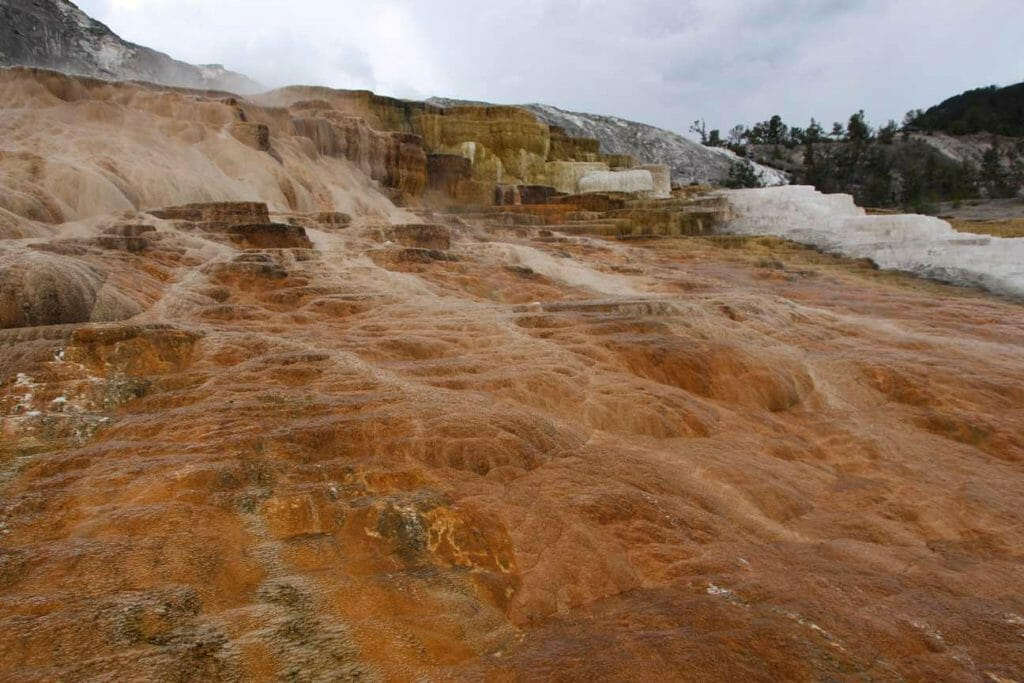 Colourful mineral deposits at Mammoth Hot Springs