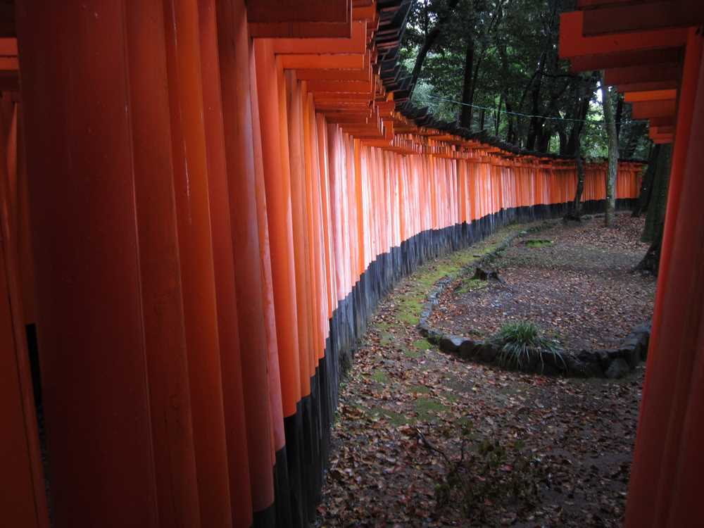 The shrine as seen from outside the torii gates