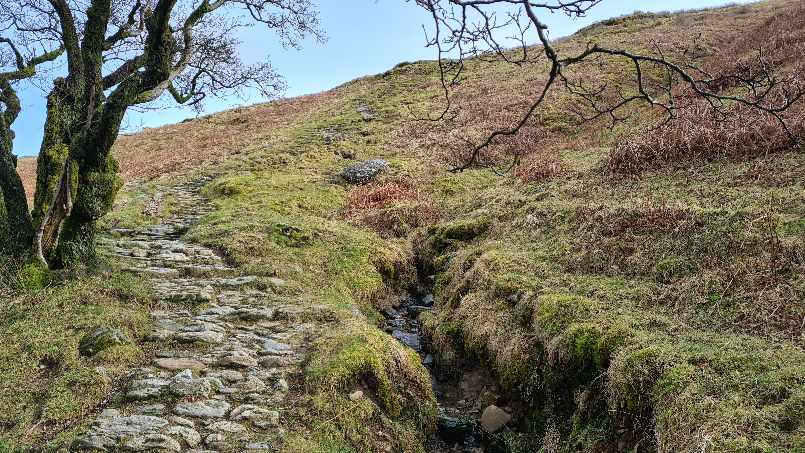 Stone path leading up the hill on Wansfell Pike